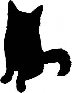 子猫のソマリ