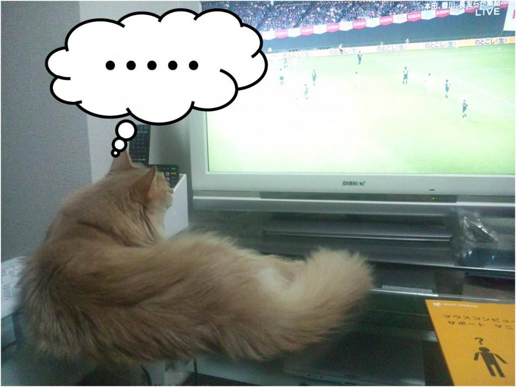 またサッカーに夢中