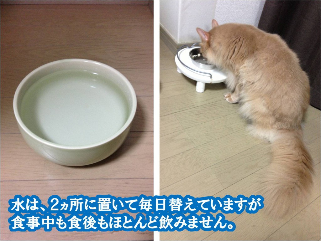 水を飲まない