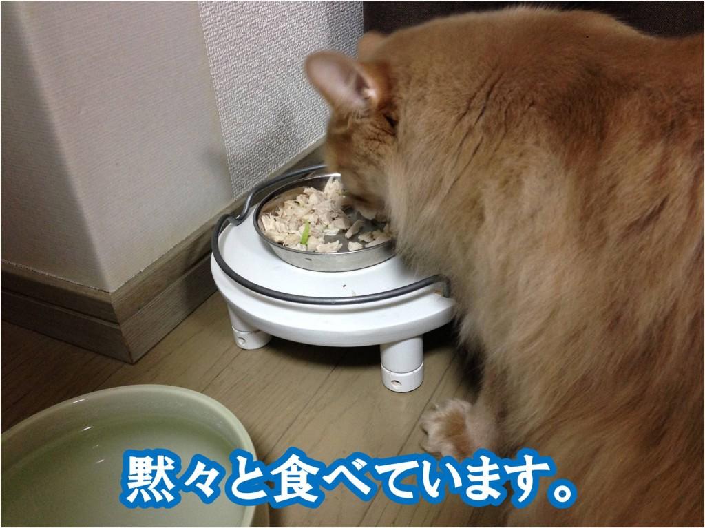 懸命に食べる
